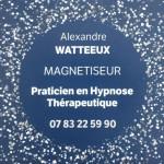alexandre watteux